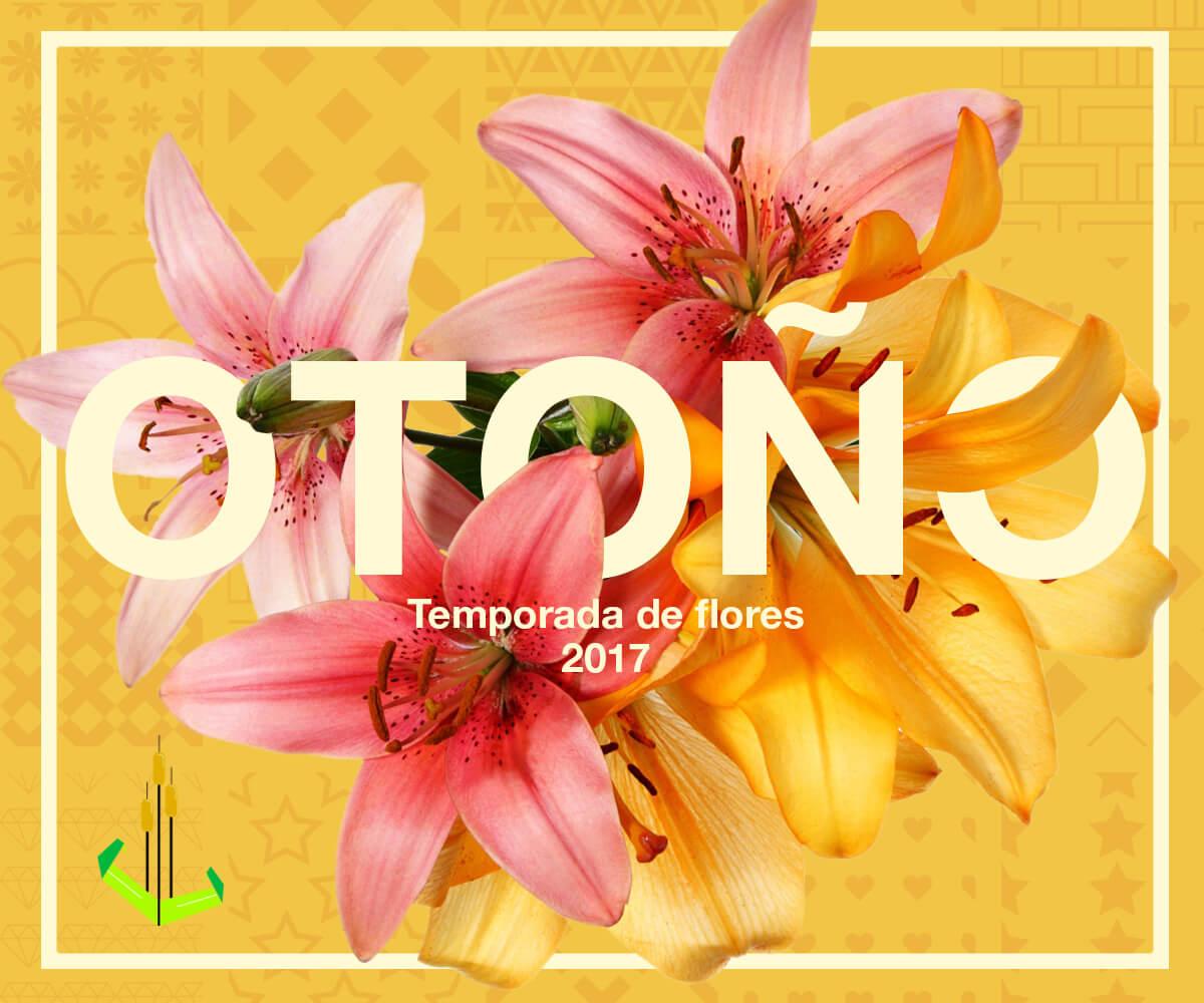 Temporada de flores